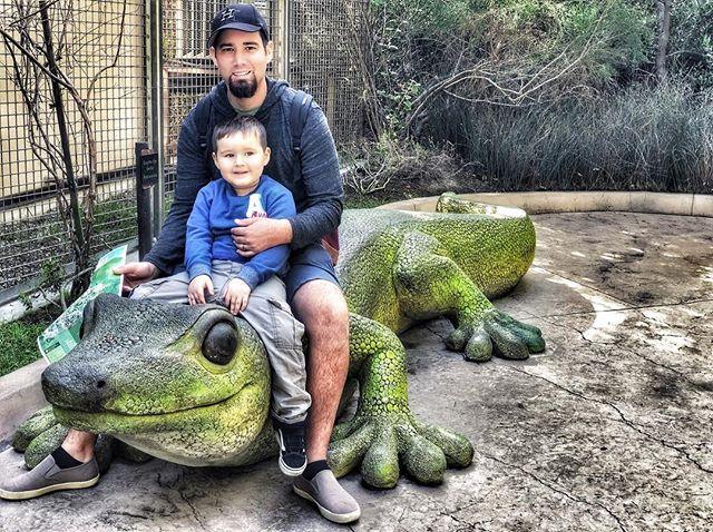 California Zoo Geko