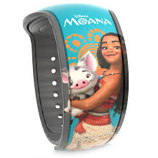 Moana decal decorated Disney magic bands for Disney World.   Disney World- What you need to know.